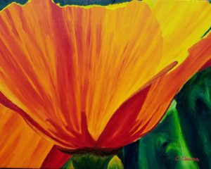 California Poppy 5x6