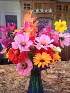 Cindy Layland last flowers of the season photo